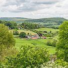 Shaftesbury, Dorset, UK by Pauline Tims