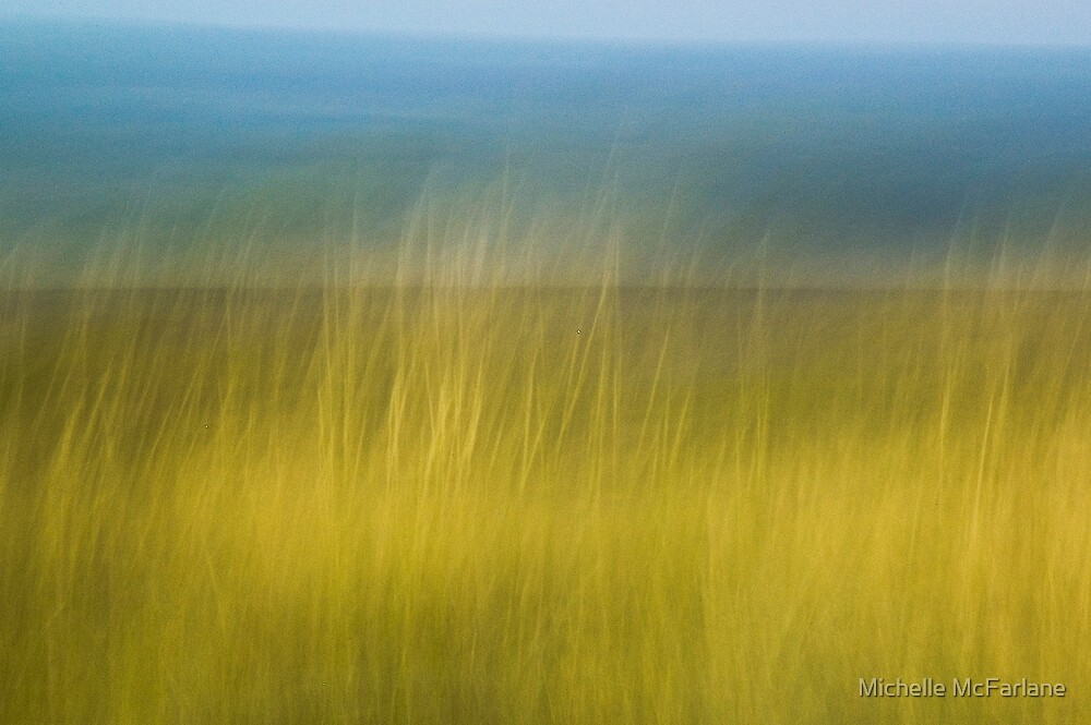 Great Sandy Desert, Australia by Michelle McFarlane