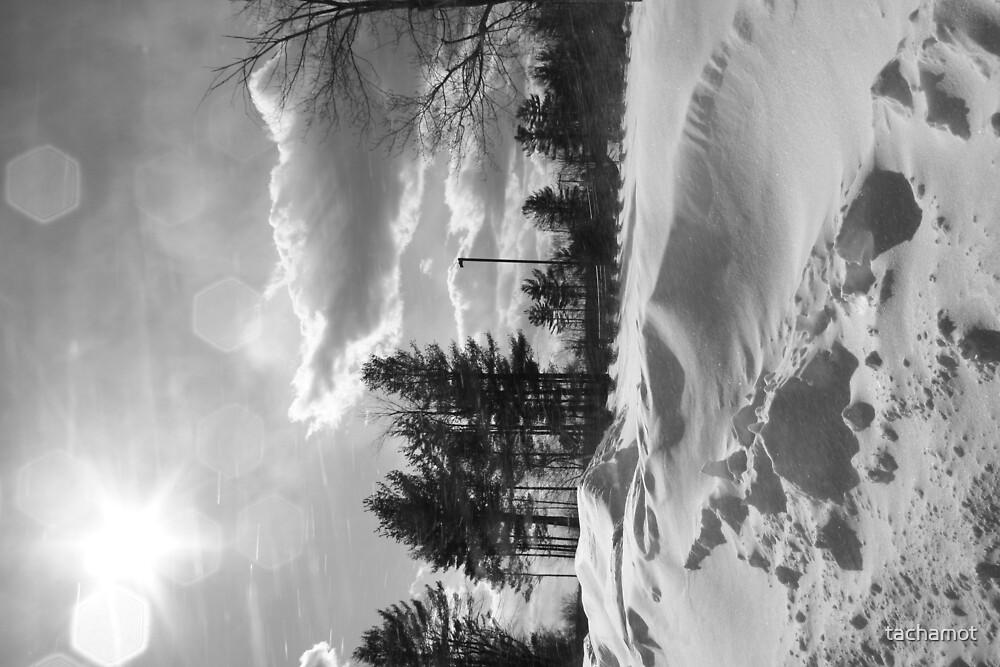 Snowstorm PA by tachamot