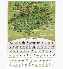 Eaglenest Wildlife Sanctuary- an Illustrated Map Poster