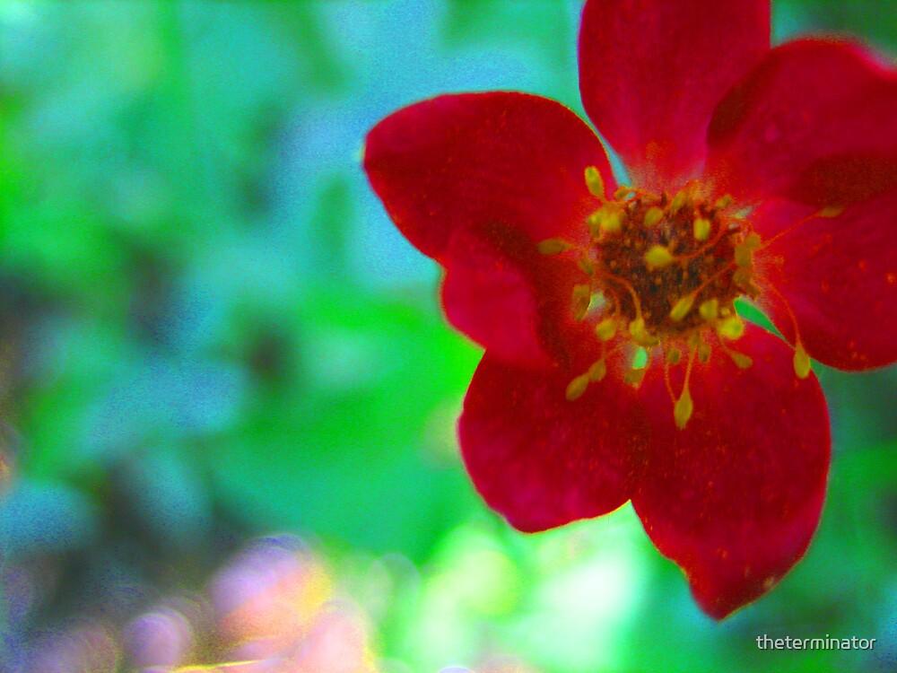 neon flower by theterminator