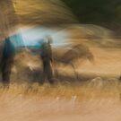 Senegal, West Africa by Michelle McFarlane