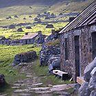 Village street, St Kilda by Fiona MacNab