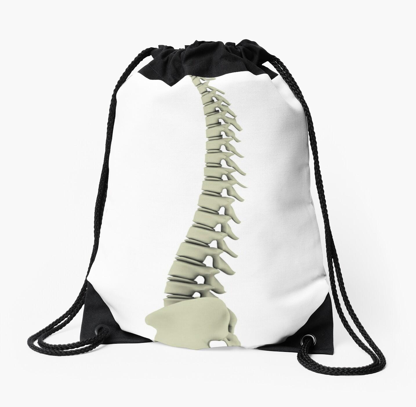 Mochilas de cuerdas «Imagen conceptual de la columna vertebral ...