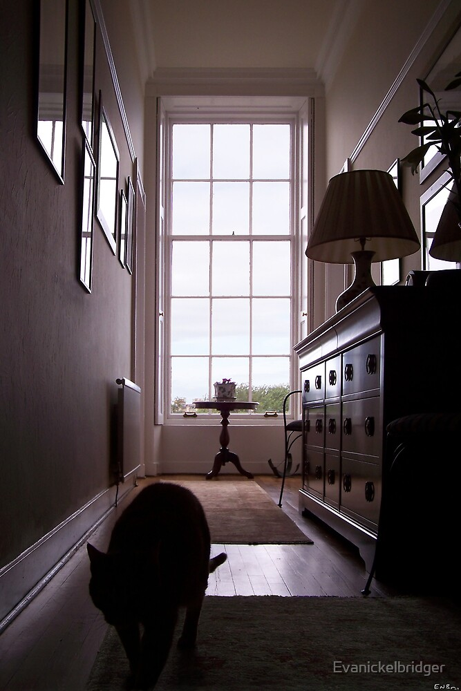 View In A Room by Evanickelbridger