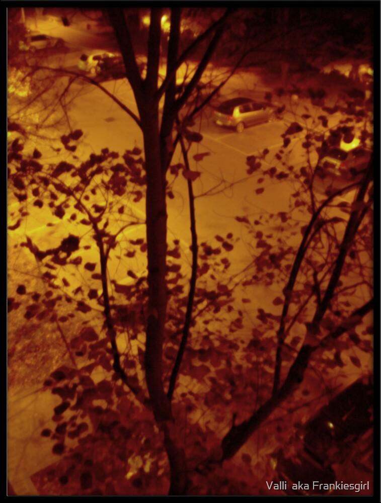 Night shot aged in photoshop by Valli  aka Frankiesgirl