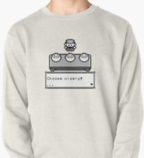Choose your companion Pullover