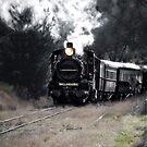 Steam Train Re-Born by Kim Austin