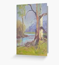 Tranquil Spot Greeting Card