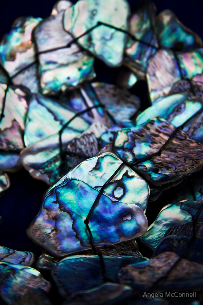 Paua by Angela McConnell