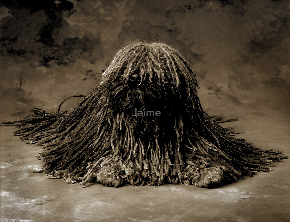 Declan by Jaime