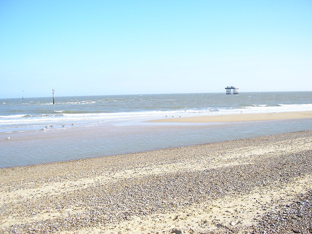 Beach by niki