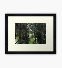 Trees. Framed Print