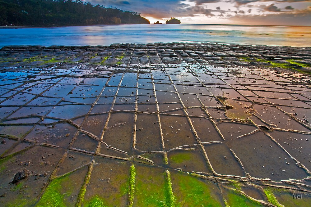 Tesselated Pavement in Colour by Neil