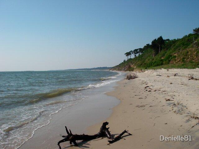 Down the beach by Denielle81