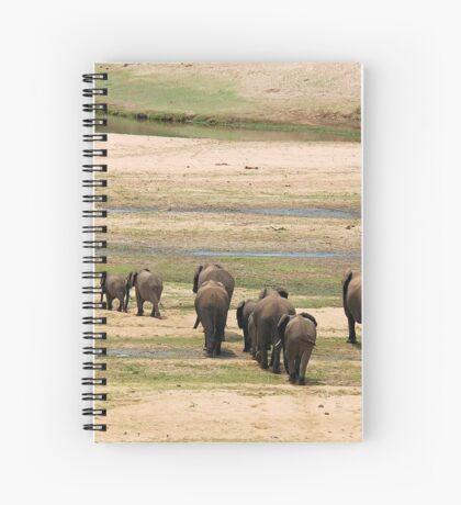 DESPERATELY SEEKING FOOD - The African Elephant Loxodonta Africana Spiral Notebook