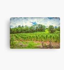 Jamaican Vineyard Canvas Print