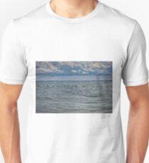 Cormorants Over Lake Erie T-Shirt