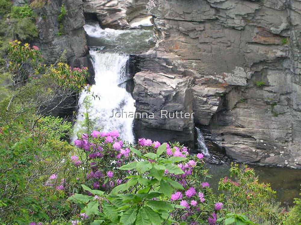 Linville Falls, North Carolina by Johanna  Rutter