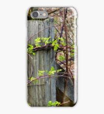 Bramble iPhone Case/Skin