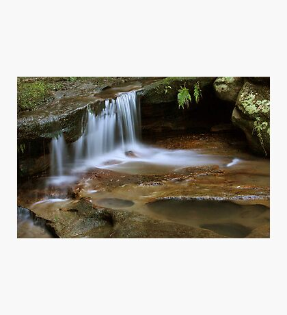 Tranquil Creek Photographic Print