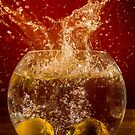 Refreshing Drop  of Punch by John Dunbar