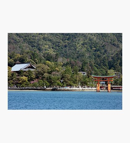 The Great Torii Photographic Print