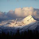 Mountain Living by Jill Doyle