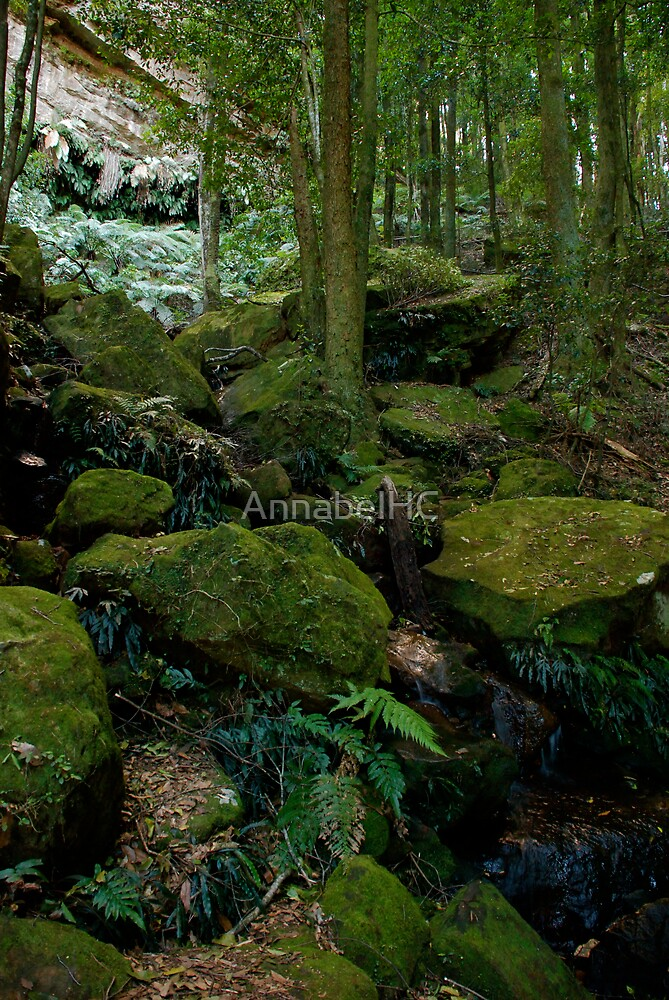 Rock Fall by AnnabelHC