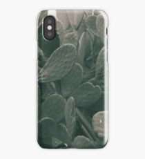 Prickly Pear leaf, Macro, high quality Photo, still life, Cactus, fine art, photography, glicée, print, nature, lover, photo 2 of 2 iPhone Case/Skin