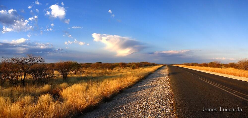 ..Pofadder to Kimberley.. by James  Luccarda