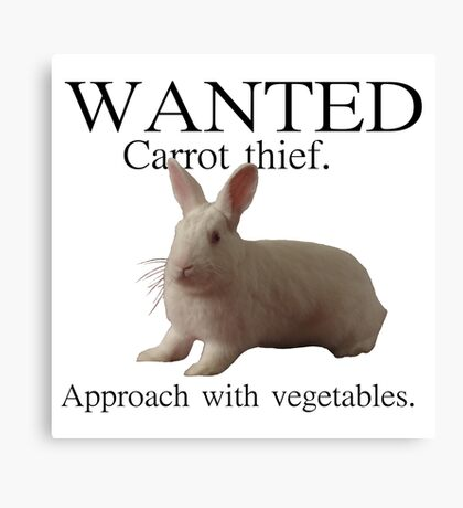 Wanted - Carrot thief Canvas Print