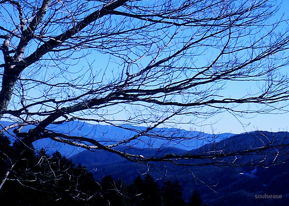 Tennesse Blue Ridge Mts by soulsease