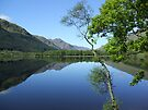 mirror calm scottish loch   by dinghysailor1