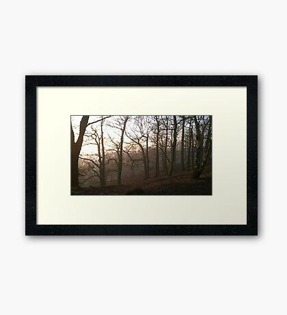 Foggy Hillside wood Framed Print