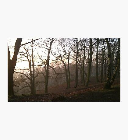 Foggy Hillside wood Photographic Print