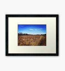 Open Prairie Framed Print