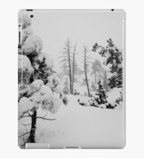 Snowstorm in the forest iPad Case/Skin
