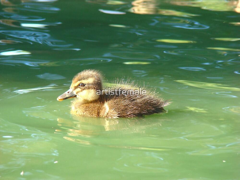 Cutest Little Baby Ducky Wucky by artistfemale