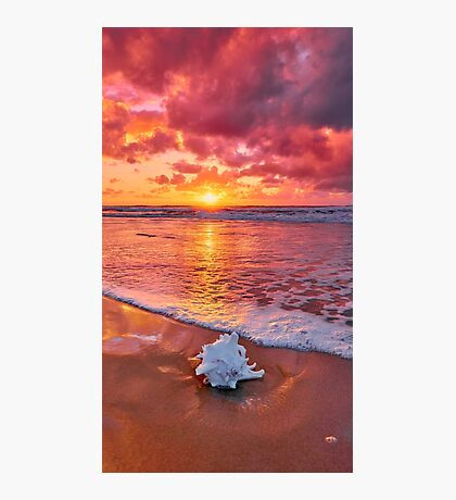 Shelly Sunrise Photographic Print