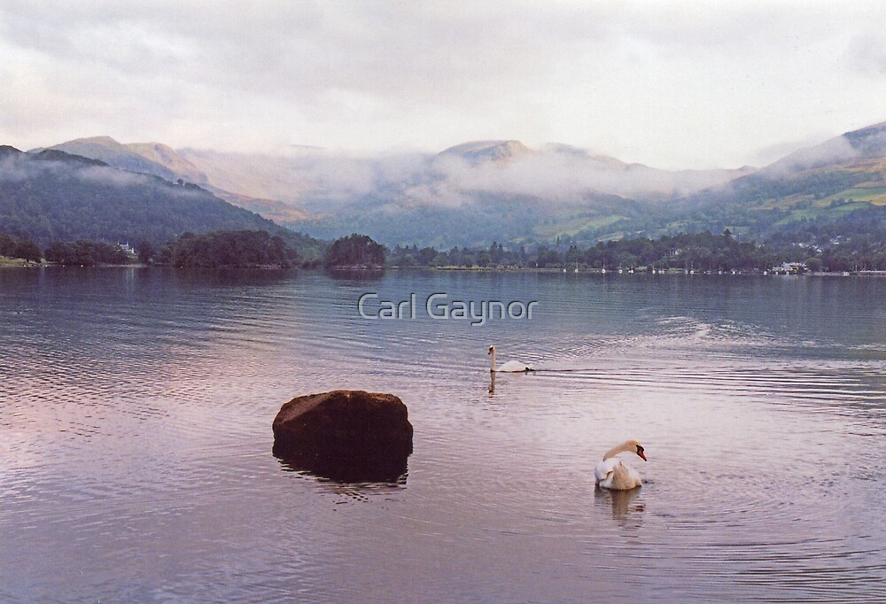 Swan's Lake  by Carl Gaynor