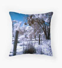 Fenced Off Throw Pillow