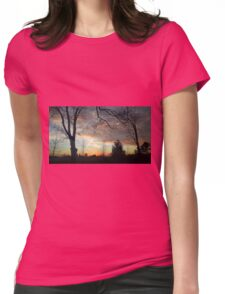 Dusky Ontario Sky Womens Fitted T-Shirt