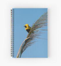 Golden Bishop bird Spiral Notebook
