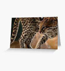 Ocelot Greeting Card