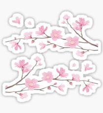 Cherry Blossom - Transparent Sticker