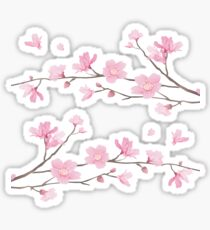 Cherry Blossom - Transparent Sticker