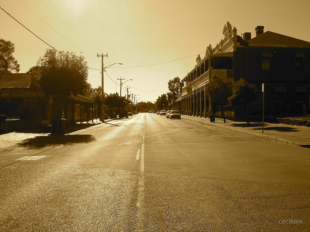 perspective on Toodyay by ceciliam