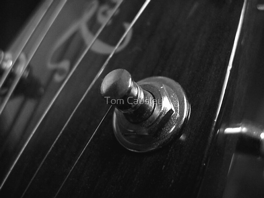 Guitar Tuner by Tom Causley