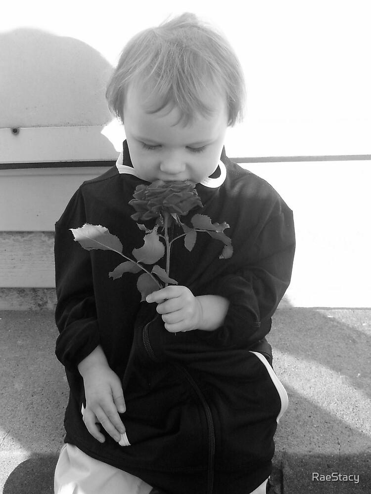 Rose by RaeStacy